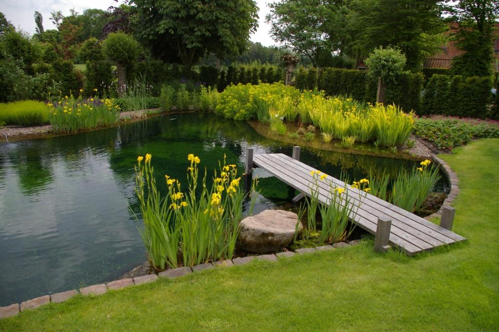 Idee kleine japanse tuinen : Vijvervissen - De Watermolen
