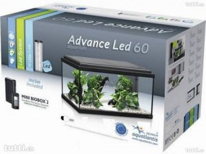 Aquatlantis advance led 60