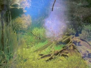 Tropische vijver